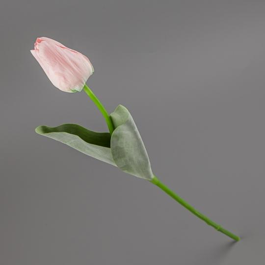 Тюльпан (55 см) (015FR-2/pink)