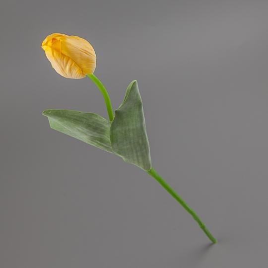 Тюльпан (55 см) (015FR-4/yellow)