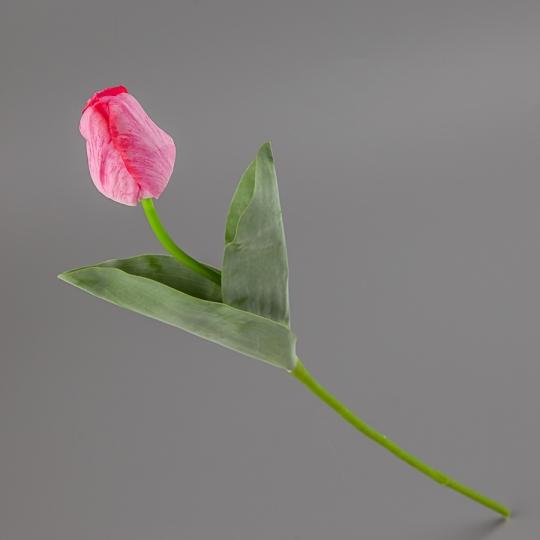 Тюльпан (55 см) (015FR-7/pink)