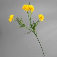 Хризантема (70 см)
