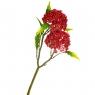 Вибурнум цветок красный (8024-001)