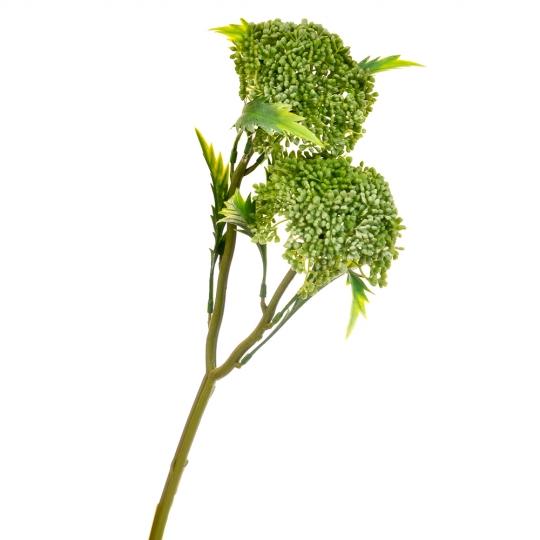 Вибурнум цветок зеленый (8024-003)