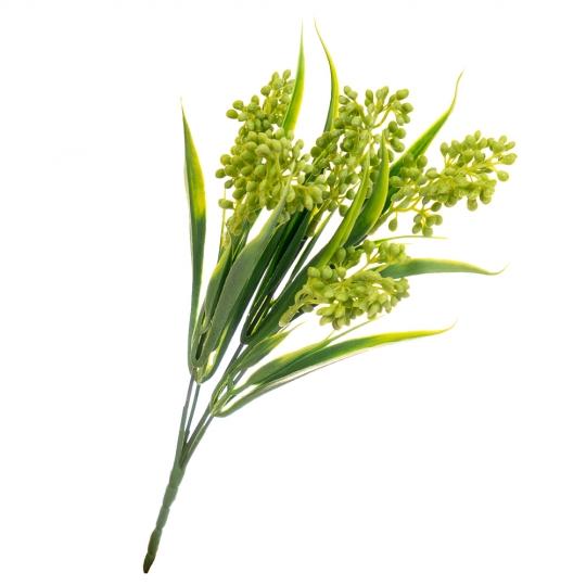 Мимоза салатовая (8024-008)