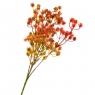 Ваксфлауэр букет оранжевый (8024-009)