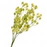 Ваксфлауэр букет желтый (8024-011)