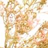 Букет гипсофилы пастельный (8031-014)