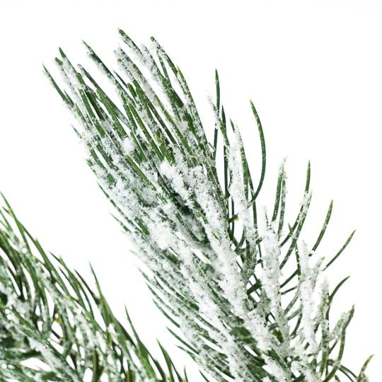 Ветка сосны в снегу (017NT)