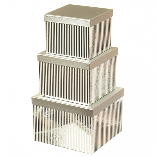 """Набор коробок """"Сияние"""", прямоугольные  (silver) (019YA-sl)"""
