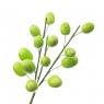 """Ветка декоративная """"Пасхальные крашенки салатовые"""" (15шт) (5000-013/GREEN)"""