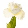 """Цветок искусственный """"Ирис белый"""" (2000-014WT)"""